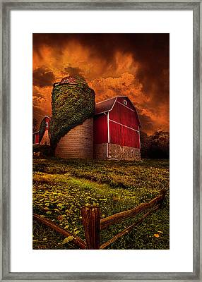 Standing Tall Framed Print by Phil Koch