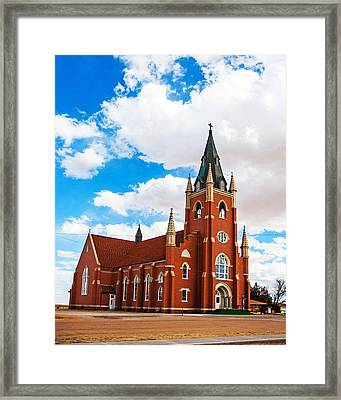 Framed Print featuring the photograph Reaching Upward by Shirley Heier