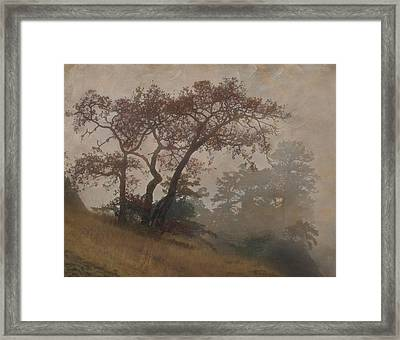 Standing Through The Storm Framed Print by Angie Vogel
