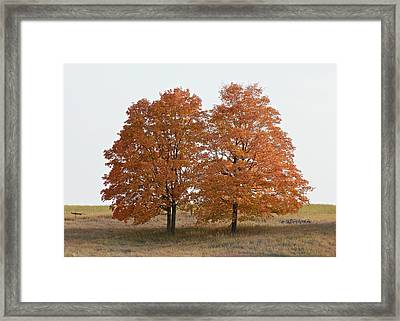 Standing Together Framed Print by Penny Meyers