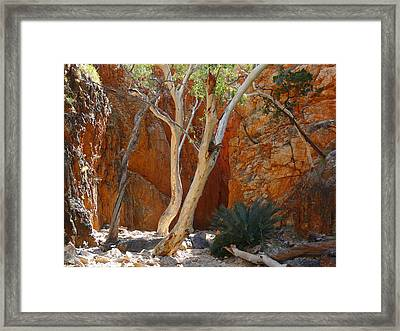 Standley Chasm Framed Print by Evelyn Tambour