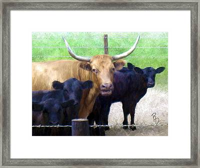 Standout Steer Framed Print by Ric Darrell