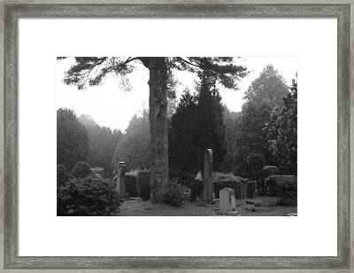 Framed Print featuring the photograph Stanford White by Steven Macanka