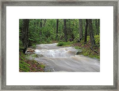Stanley Brook In Acadia National Park Framed Print by Juergen Roth