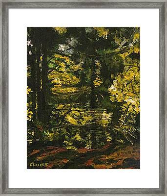 Stanley Park Framed Print by Anees Peterman