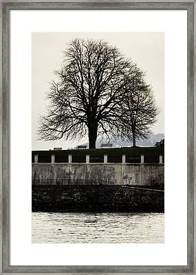 Stanley Park Framed Print by Jerry Cordeiro