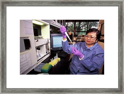 Staphylococcus Toxins Research Framed Print