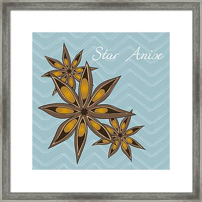 Star Anise Art Framed Print