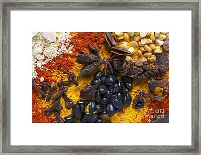 Star Anise Cloves And Black Beans Framed Print by Paul Cowan