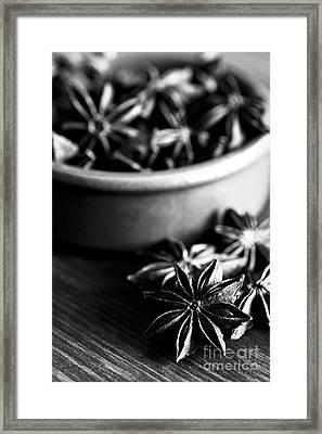 Star Anise Dish Framed Print