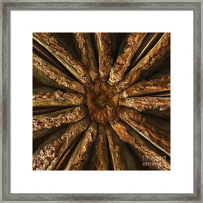 Star Anise, Sem Framed Print