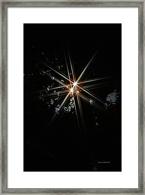 Star Bright Framed Print by Donna Blackhall