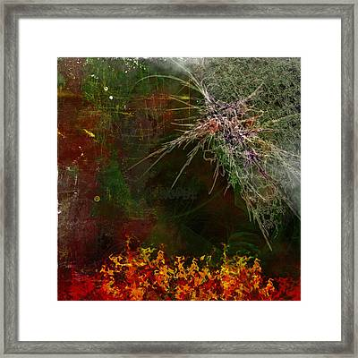 Star Burst Framed Print by Christopher Gaston