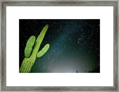 Star Filled Night Sky With Saguaro Framed Print by Richard Wright
