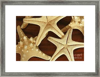 Star Fish Framed Print by Inspired Nature Photography Fine Art Photography