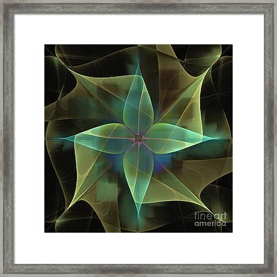 Star Flower Framed Print by Ursula Freer