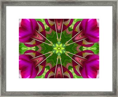 Star Fuchsia 1 Mandala Framed Print