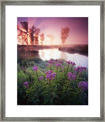 Star In The Fog Framed Print