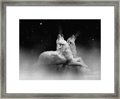 Star Talkers Framed Print