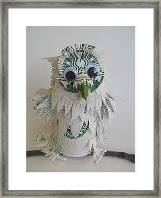 Starbucks Snowy Owl Framed Print by Alfred Ng