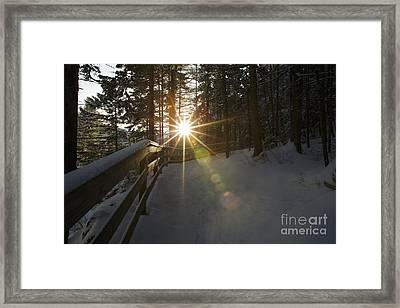 Starburst Sun Shine - Franconia Notch State Park New Hampshire  Framed Print by Erin Paul Donovan