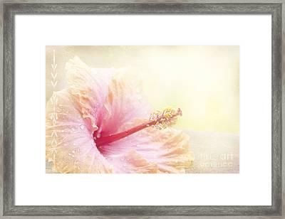 Stardust Framed Print by Sharon Mau