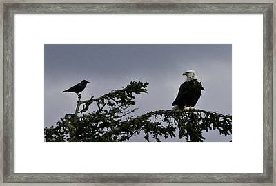 Framed Print featuring the photograph Stare Down by Betty Depee