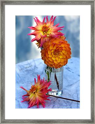 Framed Print featuring the photograph Starfire by Jeanette C Landstrom