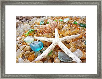 Starfish Art Prints Shells Agates Coastal Beach Framed Print