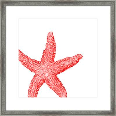 Starfish Framed Print by Bonnie Bruno