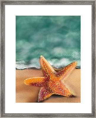 Starfish  Framed Print by Christine Fournier