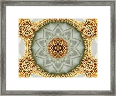 Starfish Crystal Mandala Framed Print