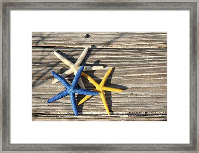 Framed Print featuring the photograph Starfish by Elizabeth Budd