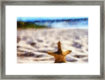 Starfish In The Sand Framed Print by Dan Sproul