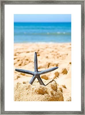 Starfish On Algarve Beach Portugal Framed Print by Amanda Elwell