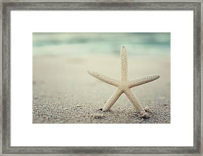 Starfish On Beach Vintage Seaside New Jersey  Framed Print