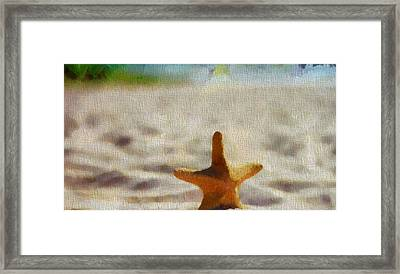 Starfish On Canvas Framed Print by Dan Sproul