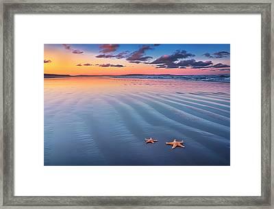Starfish On Sand Framed Print by Joe Regan