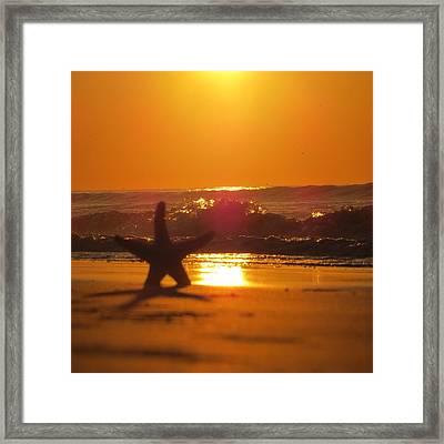 Framed Print featuring the photograph Starfish Sunrise by Nikki McInnes