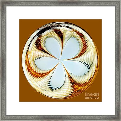Starfish To Flower - Orb Framed Print by Kaye Menner