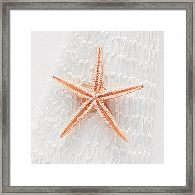 Starfish Framed Print by Tom Gowanlock