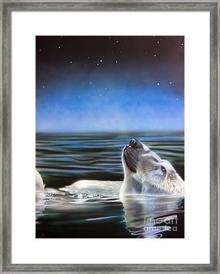 Stargazer Framed Print by Sandi Baker