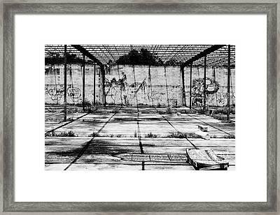 Stark Paradise Framed Print