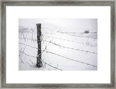 Stark Realities Of Winter Framed Print by John Haldane