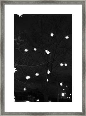 Starlight Framed Print by Barbara Bardzik
