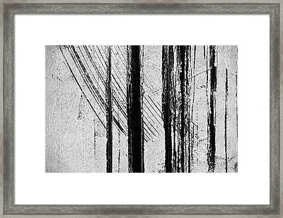 Starlight Behind The Trees Framed Print by KM Corcoran