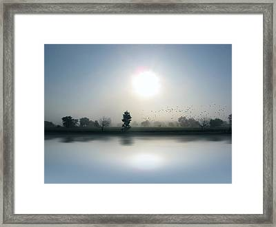 Starlings Misty Morning - Limited Edition Framed Print