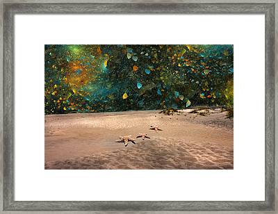 Starry Beach Night Framed Print