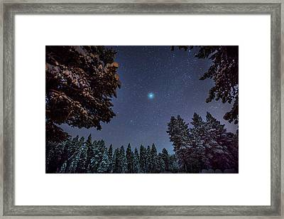 Starry Cold Night And Trees, Lapland Framed Print
