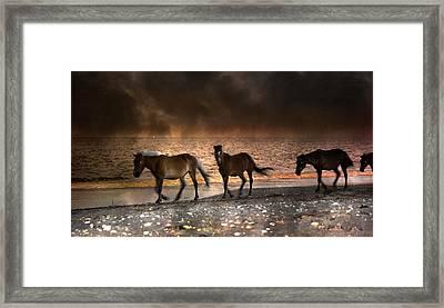 Starry Night Beach Horses Framed Print